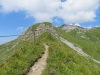 steiler Abstieg zur Pfälzerhütte