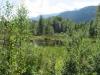 Naturschutzgebiet Steinmösli