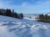 auf der Lichtung oberhalb Bildhus, Rittmarren; Sicht gegen den Zürichsee