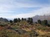 malerische Landschaft auf der Moosfluh; RE Gersthorn 2926m, Schilthorn 3122m, Alpjuhorn 3134m