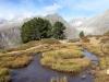 Hohstock 3226m, Sparrhorn 3020m, Nesthorn 3822m,hi  Schinhorn 3797m