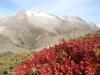 Herbstbild mit Schinhorn, 13 Fusshörner, Grosses Fusshorn 3626m, Rotstock 3701m, Geisshorn 3740m, Zenbächenhorn 3386m,