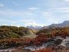 Herbstlandschaft auf der Moosfluh; Vorderer Helsen 3106m, Helsehorn 3372m,