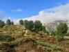 wunderbare Landschaft beim Aufstieg zur Hohfluh ; re Aletschbord