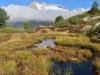einer der zahlreichen Tümpel mit 3 Fusshörner, Grosses Fusshorn 3626m, Rotstock 3701m, Geisshorn 3740m, Zenbächenhorn 3386m, Rothorn 3271m