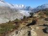 Blick von der der Hohfluh; ross Wannenhorn 3905m, Klein Wannenhorn 3706m, Strahlhorn 3026m, Oberaarhorn 3637m, Eggishorn 2926m, Bettmerhorn 2872m