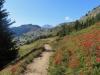 ein schönder Weg zur Gopplerlücke; Blick zurück zur Riederalp