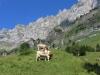 Bergidyll  unterhalb des Felsbandes des Hochhorns