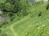 Aufstieg zum Rietstöckli  mit  Ortstock 2716m