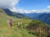 Vorder Eggstock, Leitereggstock, Vrenlisgärtli 2904m und Braunwald