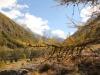 Herbststimmung bei Saas Grund mit Almageller Horn 3327m, Stellihorn 3436m
