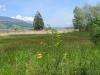 Naturschutzgebiet Hanenried