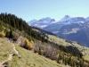 Chammlilberg 2854m, Chammlilücke 2854m, Gross Schärhorn 3294m, Chli Schärhorn 3234m