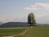 Aussichtspunkt Ballebüel  mit Berner  Alpen; keine gute Alpensicht