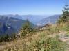 Blick auf Niesen und Thunersee