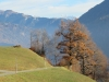 Herbstbild; Landschaft bei Seewis;