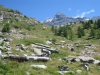Alp Balma mit Schwarze Tschuggen 2670m