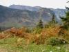 Blick hinunter ins Tal