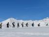 eine Gruppe unterwegs   ; hi  Sassauna, Schafköpfe, Schesaplana