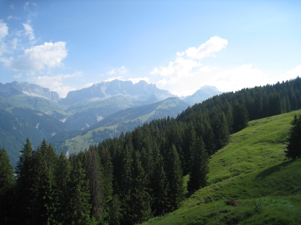 Kirchlispitzen 2551m, Schweizertor 2137m, Drusenfluh 2827m, Dri Türm 2830m,  Schafberg 2456m, Sulzfluh 2817m