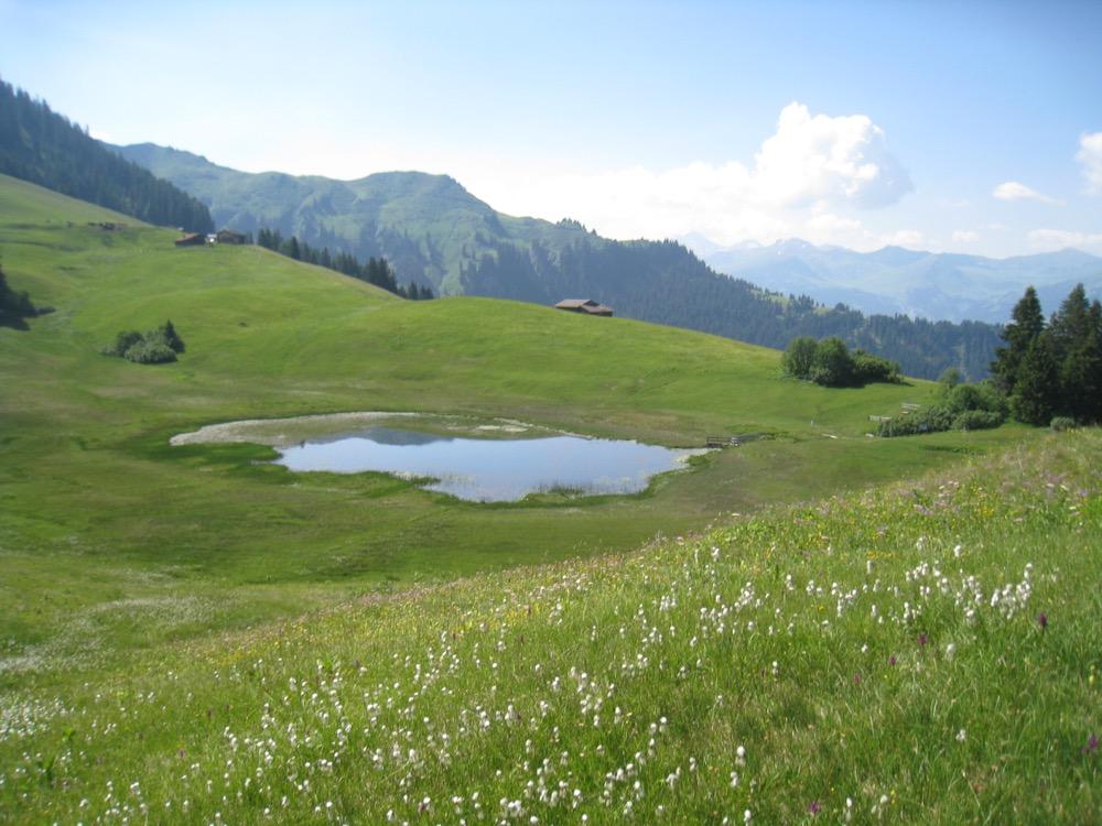 Blick auf den Stelsersee, Naturschutzgebiet; hi Alpbüel 2022m