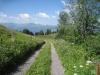 Stelserberg; Weg zum See