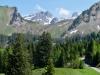 Blüemberg, Chronenstock ; Weg zur Alp Baumgarten