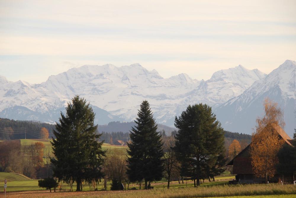 bei Herrebächle: vo Dreispitz 2520m, Morgenhorn 3627m,  Weisse Frau 3652m, Blüemlisalphorn 3664m, Oeschinenhorn 3486m,  Fründenhorn, Doldenhorn 3643m, vo Niesen 2362m