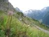 Titlis 3238m, Fünffingerstöck 3023m , Sustenpass; Sustenhorn 3503m