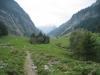 Blick gegen Schwarzental, Wetterhorngruppe;  Jungibäche
