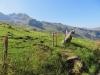 Blick hinüber zum Forstberg 2215m