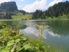 am Seeblisee