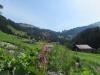 Blick ins Turbachtal; gegen den Rüwlipass