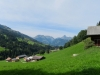 Blick talauswärts; Staldenflue 2250m,  Gummfluh 2458m,  Le Rubli 2284m