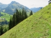 Wassergrat; Pfad im Steilhang