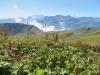 Sicht von Schönbühl 2008m;Dossen 3138m, Wellhorn 3192m, Rosenhorn 3689m, Mittelhorn 3704m, Wetterhorn 3692m, Mönch 4099m, Jungfrau 4158m