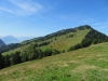 Blick auf Rigi Scheidegg 1658m