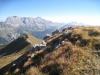 Schafberg 2727m, Salaeuelchopf 2841m,, Scheseplana 2964m, Zimba 2643m, Drusenfluh 2827m, Dri Türm 2830m, Sulzfluh 2818m