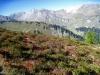 herrliche Herbstlandschaft; Falknis 2562m, Vorder Grauspitz 2599m, Hinter Grauspitz 2347m,