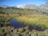 sumpfiges Gebiet: Abiggrat; hi Naafkopf 2570m ; Grat bis Tschingel