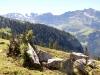 Reissend Nollen 3003m;  Wendenstöcke 3042m,  Schafberg 2522m, Graustock 2662m, Schwarzhorn 2639m, Henglihorn 25989m, Rotsandnollen  2700m, Hanghorn 2679m, Huetstock 2676m