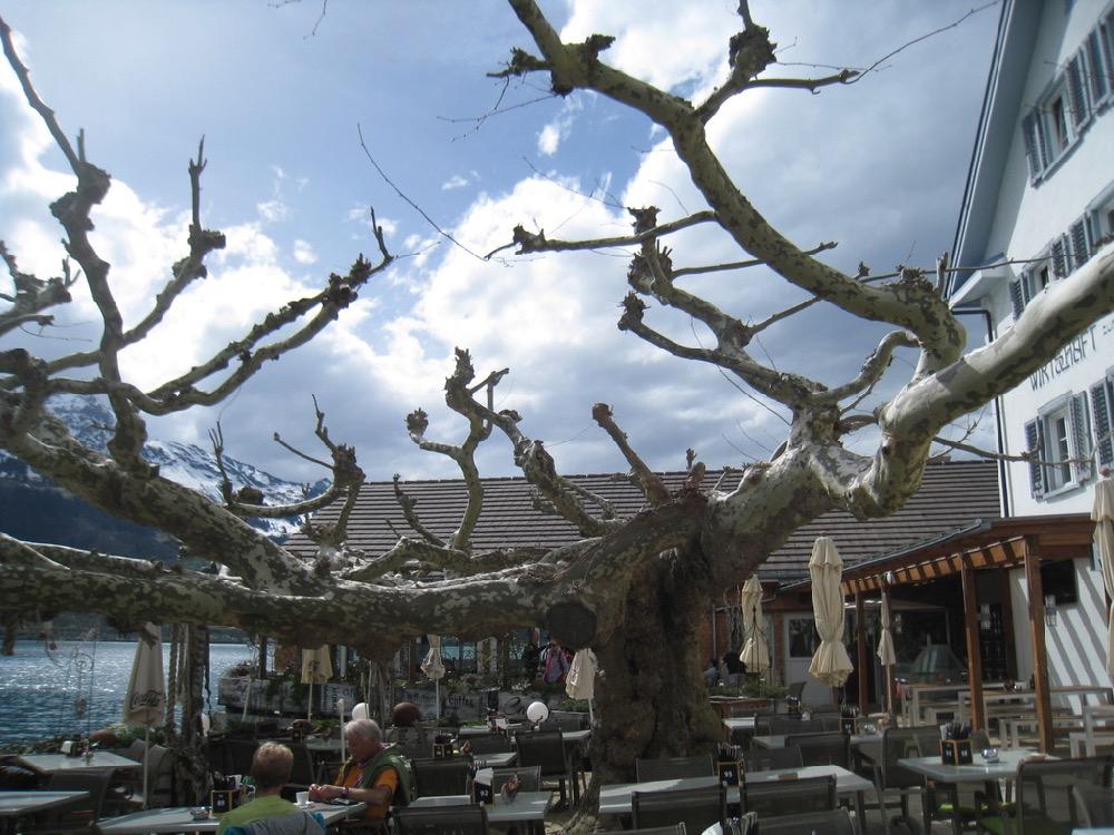 Einkehr im Restaurant am See