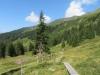 Gebiet Stäfeli; Sonnenhorn