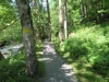 ein schöner Wanderweg der Seez entlang