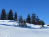 wunderbare Winterlandschaft bei Sellamatt