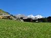 Zmutt 1915m; Wiesen mit Herbstzeitlosen; Rimpfischhorn 4199m, Strahlhorn 4190m, Adlerhorn 3988m;