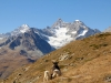 Walliser Geissen; Dent Blanche 4356m, Obergabelhorn 4063m, Wellenkuppe 3003m