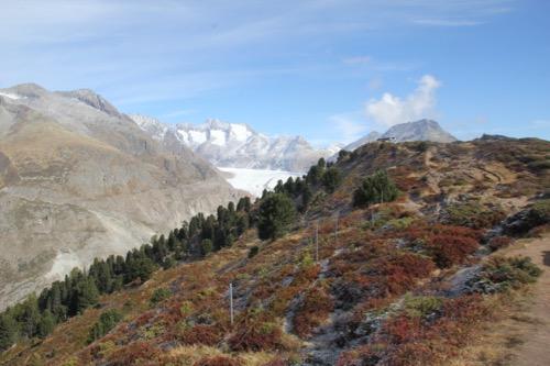 Gross Wannenhorn 3905m, Klein Wannenhorn 3706m, Strahlhorn 3026m, Oberaarhorn 3637m, Eggishorn 2926m, Bettmerhorn 2872m
