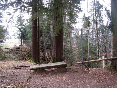 Rastplatz im Wald nach dem Aufstieg von der Hirseggbrücke