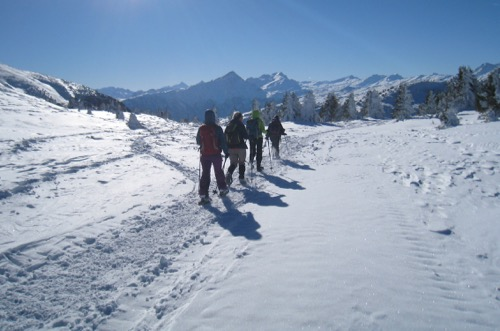 Abstieg vom Dreibündenstein 2152m nach Term Bel 1954m